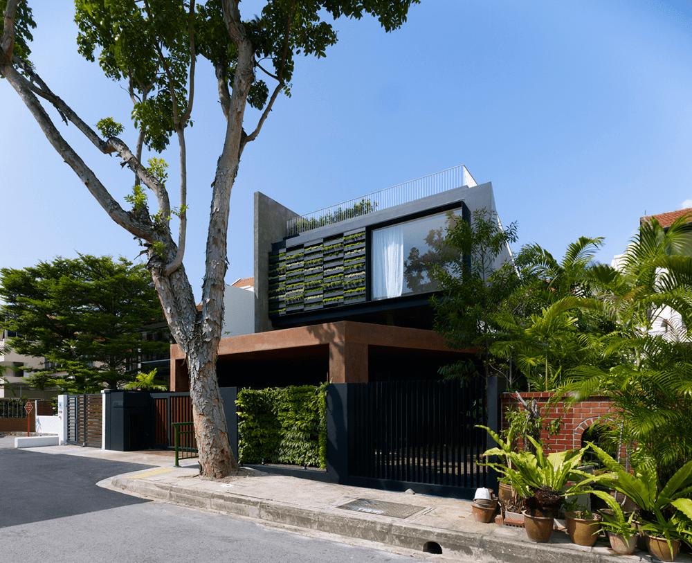 Rumah Minimalis 2021 Konsep Natural